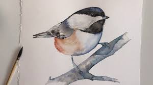 watercolor tutorial chickadee paint a chickadee in watercolour youtube
