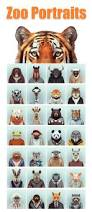 206 best zoo images on pinterest zoo animals wild animals and