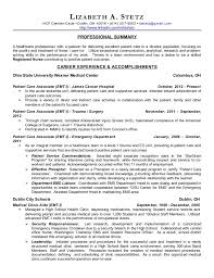 Hospice Nurse Resume Examples by Professional Summary For Nursing Resume Template Examples