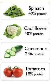 high protein vegetarian foods natural health pinterest
