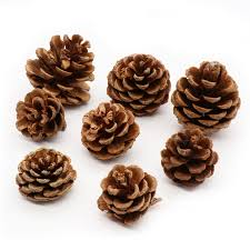 christmas nuts 3pcs pine nuts handmade artificial plant for christmas wedding