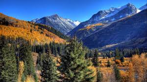 cool trees mountain mountain cool trees nature wallpaper mountains for hd 16