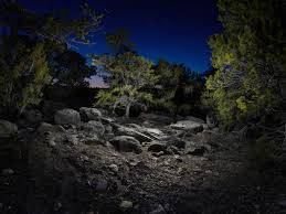 Light Painting Landscape Photography by To Be A Guest Curator She Was To Focus On Work From