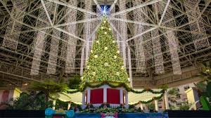 christmas hotel packages u0026 events gaylord palms resort