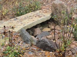 stepping stone bridge landscape solutions by susan murphy