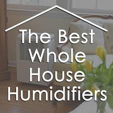 Best Humidifier For Kids Room by The 10 Best Whole House Humidifiers For Family And Baby