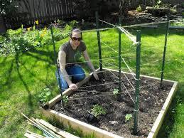 image of ideas for cucumber trellis garden pinterest