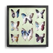 Studio Decor Shadow Box Studio Decor Shadow Box Compare Prices At Nextag