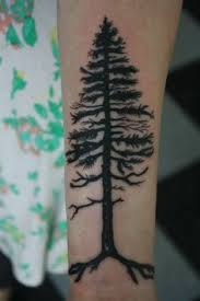 pine tree redreidinghood com i like