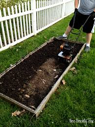 planting the vegetable garden of 2013