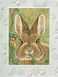 pumpernickel press wildlife cards boxed notes greeting cards pumpernickel press