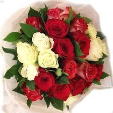 va5417 enchanted roses