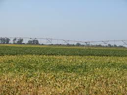 mike mccann broker nebraska farms for sale auctioneer land