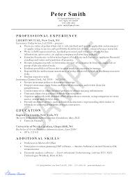 Work History Resume Example by Title Insurance Resume Examples Virtren Com