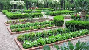 Garden Layout Vegetable Garden Layout And Ways To Improve My Garden Plant