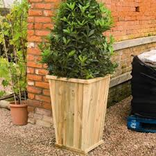 Large Tree Planters by Natural Large Planters For Outdoors Homesfeed