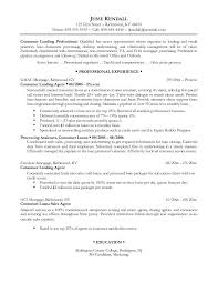 resume examples for it professionals sample resumes for