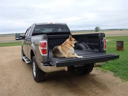 Ford F150 Truck Bed Mat - bedliner reviews which is the best bedliner for you