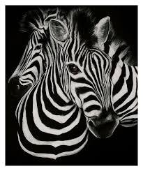 Zebra Home Decor by Hd Prints Oil Painting On Canvas Zebra Head Art Wall Decoration