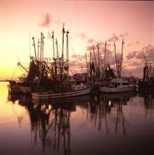 shrimp season opens june 1 on the gulfcoast of mississippi