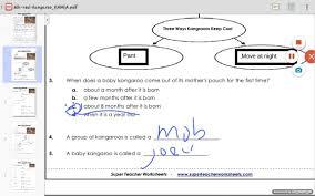 world u0027s largest marsupial worksheet answers youtube