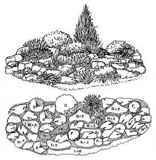 115 best landscape gardens plans timing images on pinterest