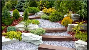 Gravel Backyard Ideas Backyards Winsome Backyard Gravel Ideas Decorative Gravel