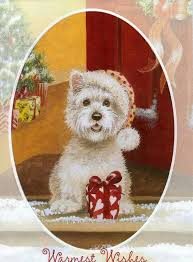 123 best westies max images on white terrier