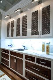 Metal Kitchen Cabinet Doors Metal Cabinet Inserts Two Tone Cabinets Contemporary Kitchen The