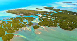 Map Of Key West Florida Florida Keys U0026 Key West Things To Do In The Florida Keys