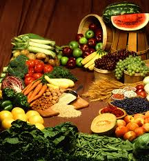 plant based diet wikipedia