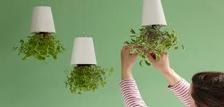 boskke upside down sky planter curve upside down planter pot