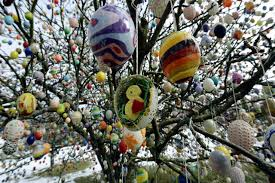 easter egg trees in germany there s a tradition that at easter decorate trees