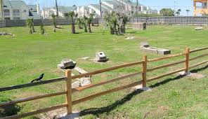 halloween cemetery fence ideas rosewood cemetery galveston historical foundation