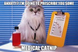 Anxiety Cat Meme - anxiety i m going to prescribe you some medical catnip doctor
