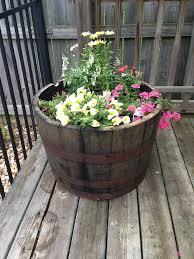 19 best hanging plant pots images on pinterest gardening
