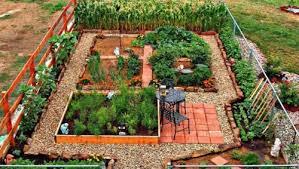 self sustaining garden fantastic vegetable garden ideas