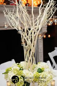 Tree Branch Centerpiece by Jackie Eckhoff Candles Hanging From Branches Wedding Ideas