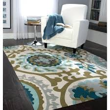Cheap Outdoor Rugs 8x10 Outdoor Area Rugs 8 10 Home Goods Area Rugs Rug Outdoor Cheap