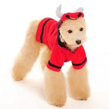 Bull Halloween Costume Angry Red Bull Dog Halloween Costume Puplife Dog Supplies
