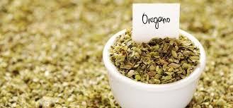 origan en cuisine 9 avantages étonnants du origan séché pour la peau les cheveux et