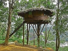 house plan fresh tree house designs and plans for tree
