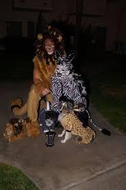 chester the jester spirit halloween halloween couple costume dog costumes safari lion zebra