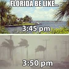 Florida Rain Meme - florida be like the meta picture