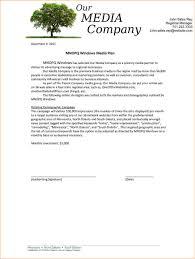 Grant Application Cover Letter Sample Youth Program Proposal Template Virtren Com
