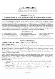 resume summary statement examples u2013 okurgezer co