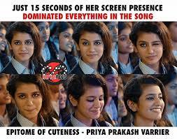Song Meme - priya varrier s wink in manikya malaraya poovi song has made