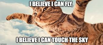 Flying Cat Meme - image tagged in flying cat imgflip
