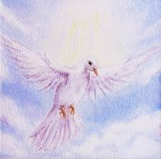 Colorful Painting by Dove Portrait In Clouds White Radiant Holy Flying Peace Symbol
