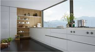 Rta Kitchen Cabinets Online Reviews Eurostyle Cabinets Installation Guide European Style Kitchen